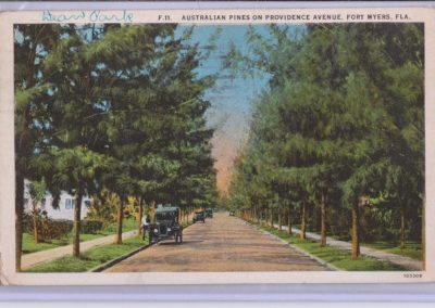 Postcard of Providence Street; 2740 Providence is at left; Australian pines line street.
