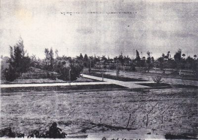 Planting & installed sidewalks in Dean Park 1915-1916. Photo courtesy of Hugh Avery